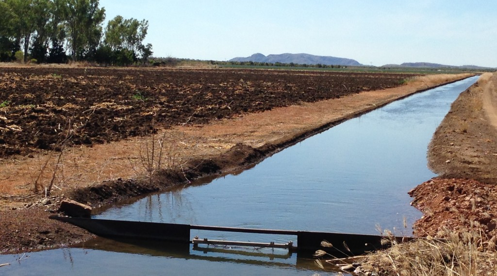 Ord River flood plain, watered by the vast Argyle Dam. Photo Chris Shanahan