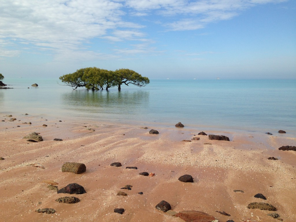 Town Beach, Roebuck Bay, Broome. Photo Chris Shanahan.