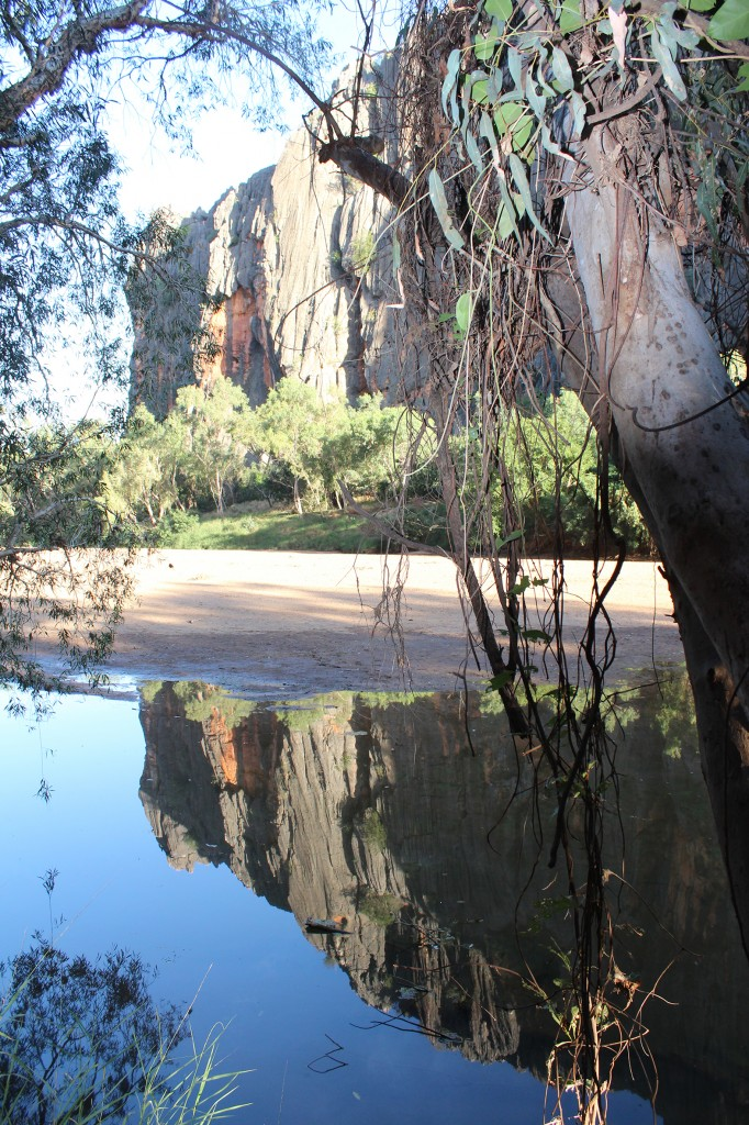 Windjana Gorge, western Gibb River Road. Photo Jill Shanahan.
